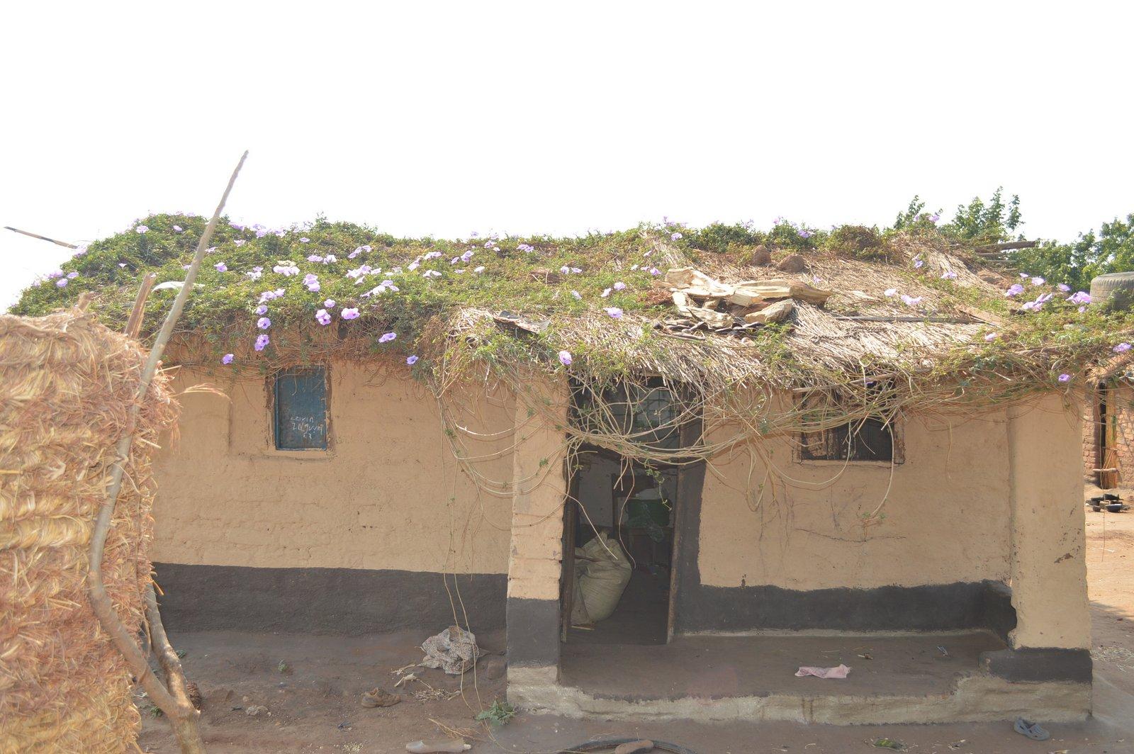 Nsangu, Salima (33).JPG