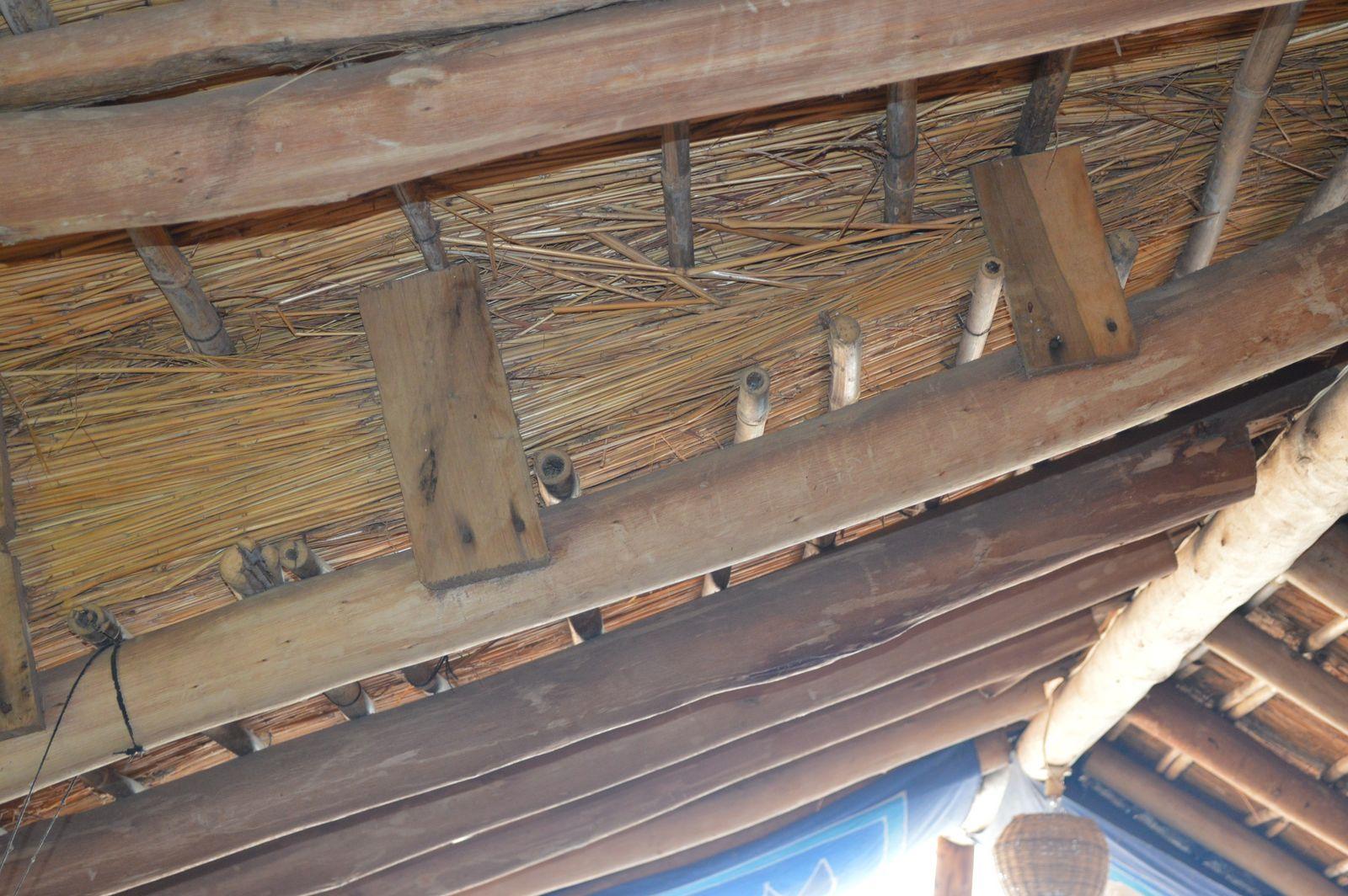 Gecko Lodge, Mangochi (37).JPG