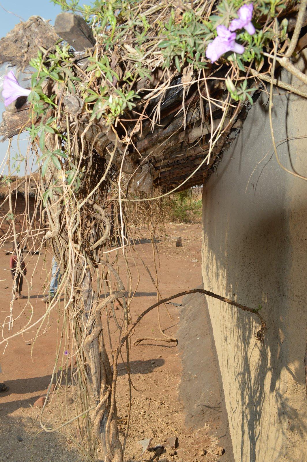 Nsangu, Salima (27).JPG
