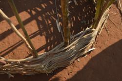 M' buka, Kasungu (11).JPG