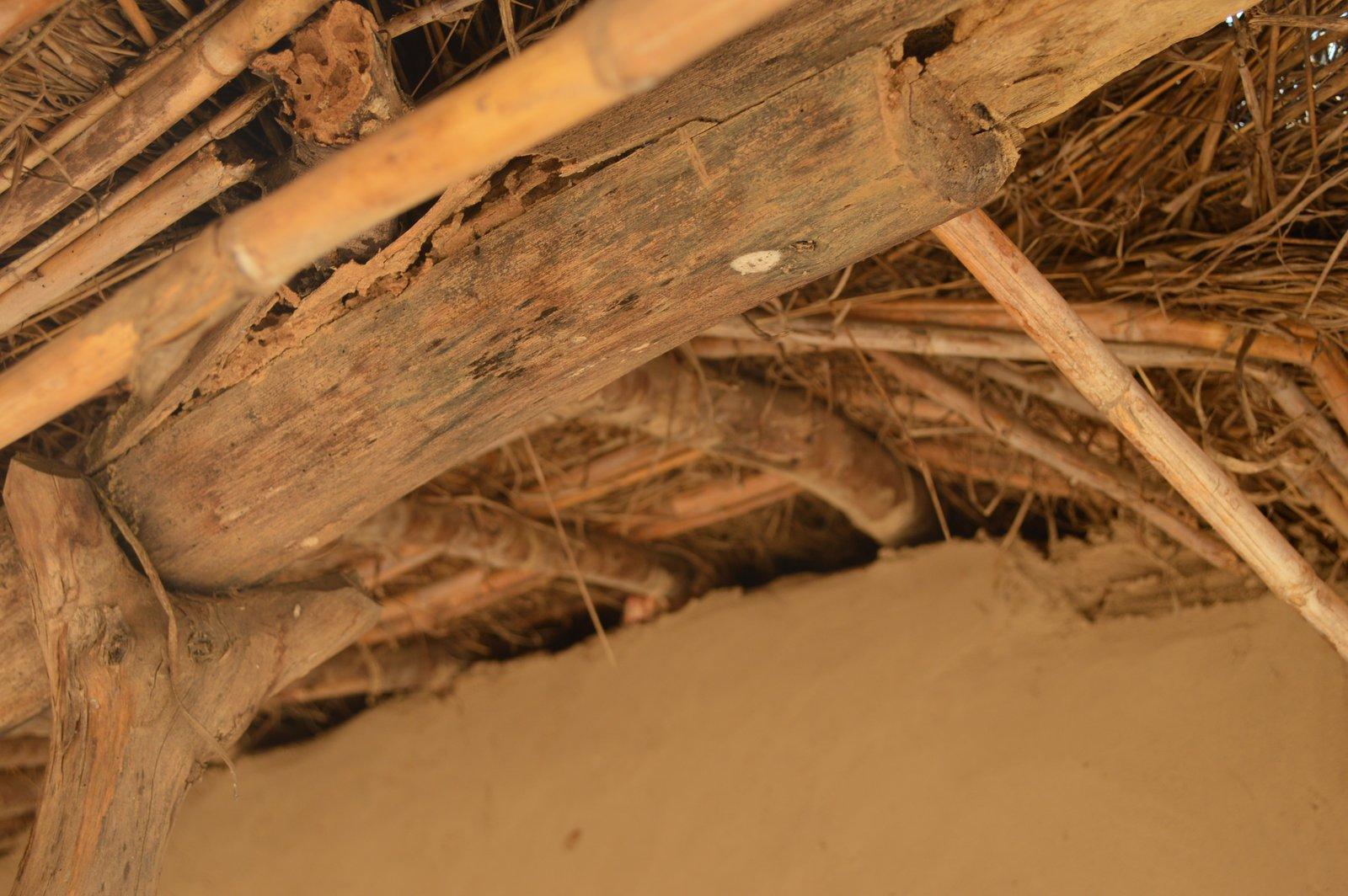 Nyemba, Kasungu (4).JPG