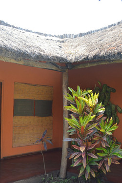Gecko Lodge, Mangochi (44).JPG