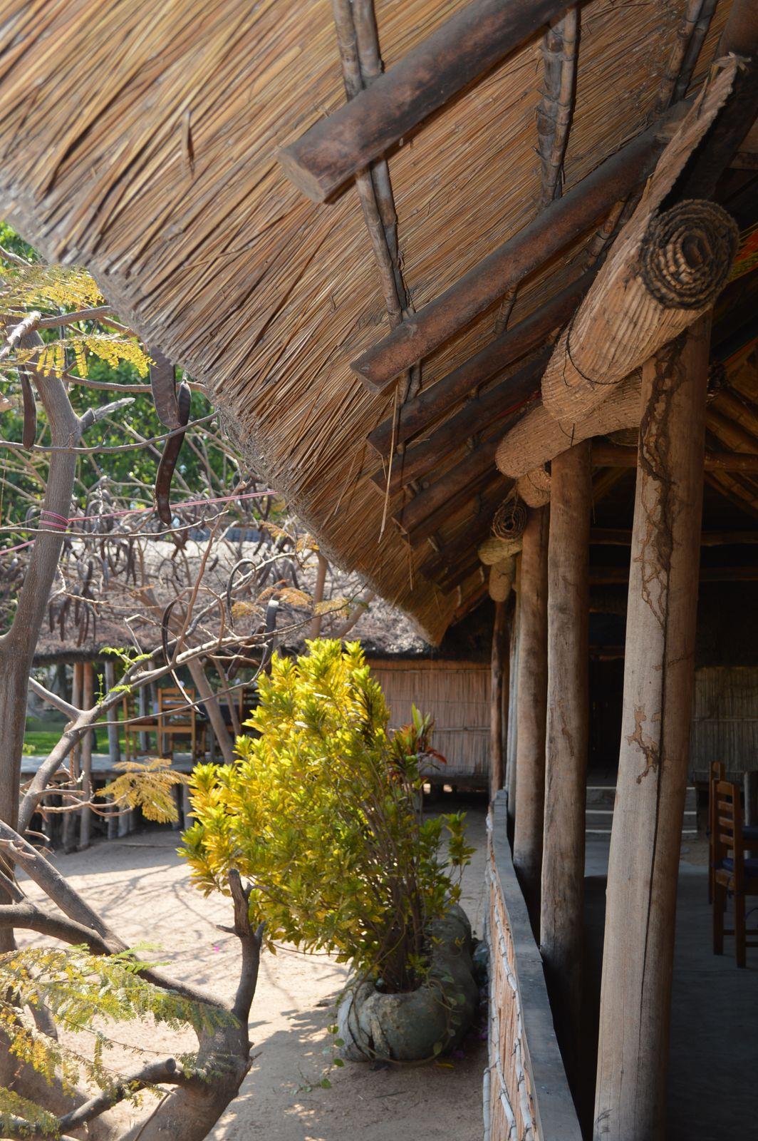 Gecko Lodge, Mangochi (24).JPG
