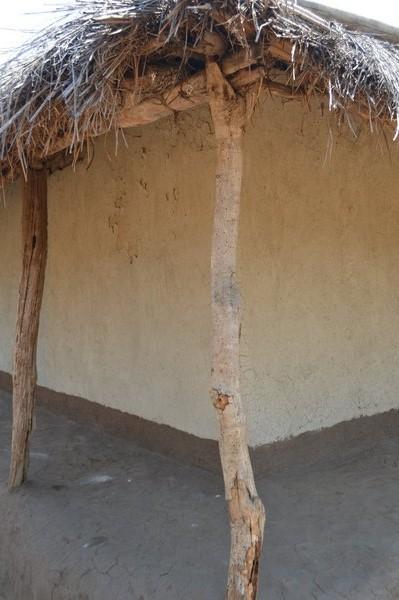Chasesa, Mwanza (14).JPG