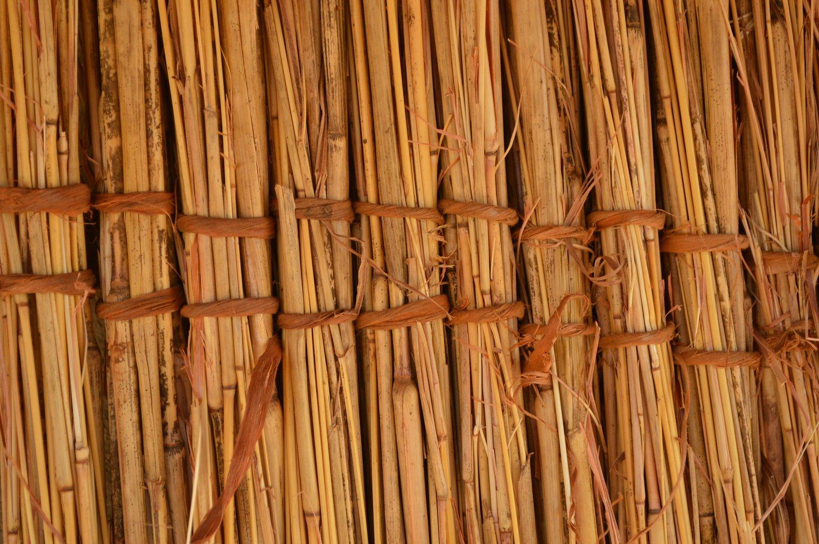 Safi, Kasungu (14).JPG