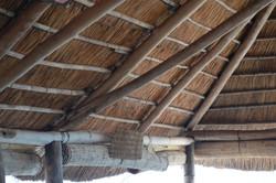 Gecko Lodge, Mangochi (14).JPG