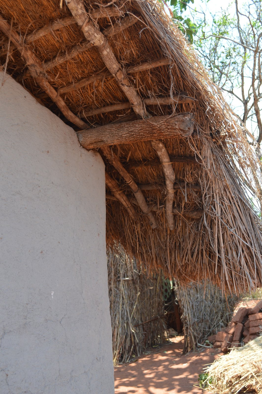 Mwantothera, Nzimba (43).JPG