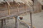 Chicken coop constructed with reeds and having small wood poles as support Station village Malawi, malawi architecture
