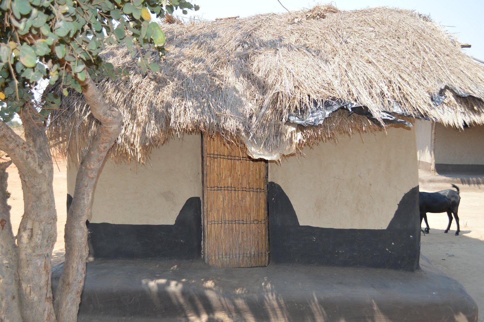 Nsulila, Kasungu (27).JPG