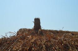 Nqhondowe, Kasungu (11).JPG