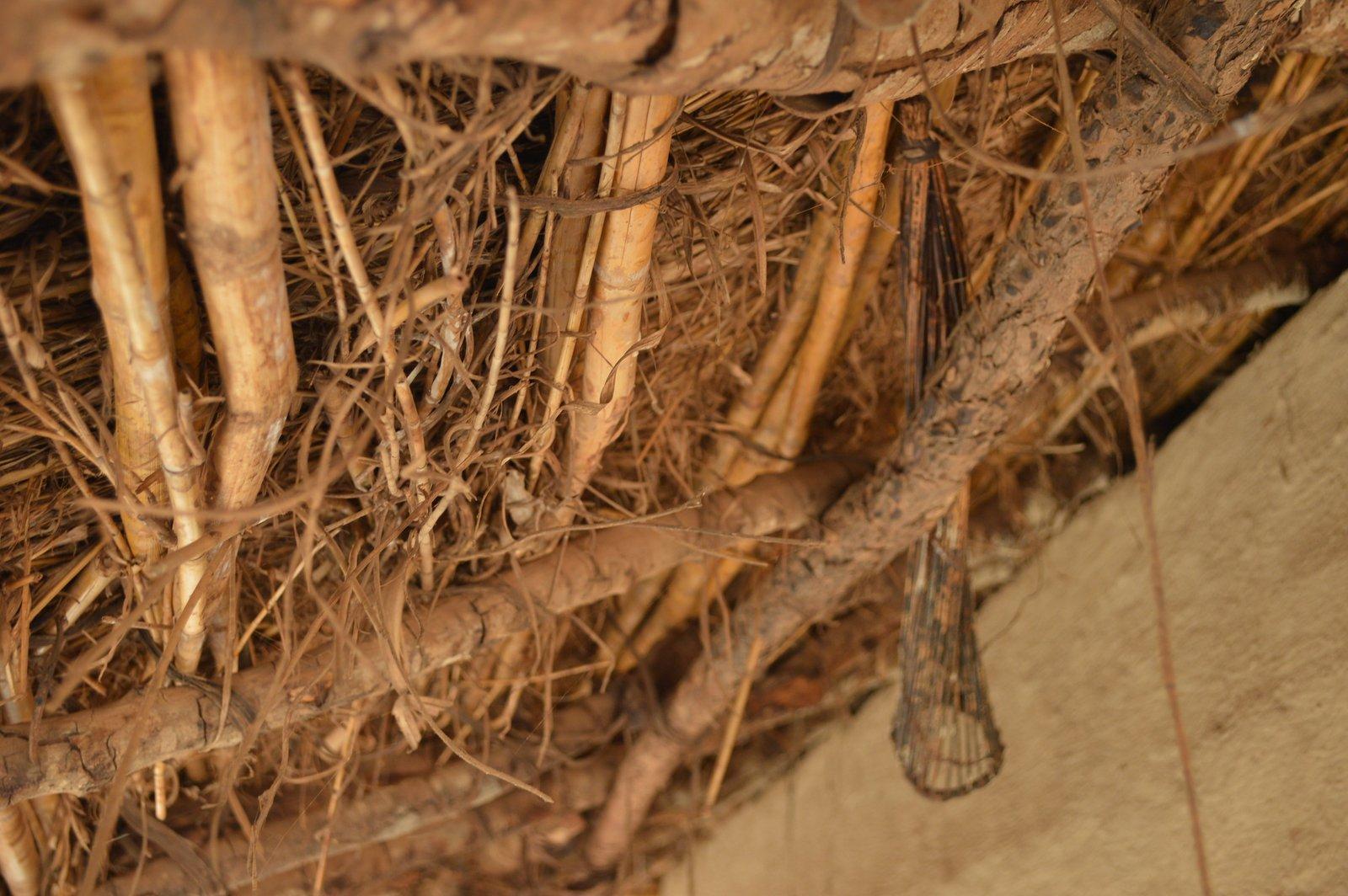 Kabomolo, Chitipa (28).JPG