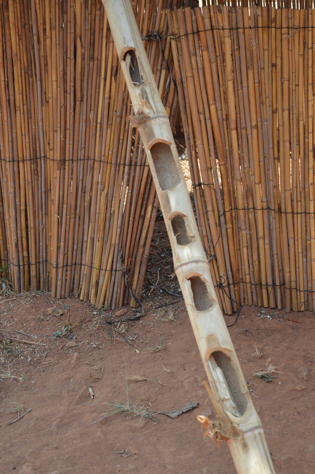 Pasani, Nkhata Bay (17).JPG