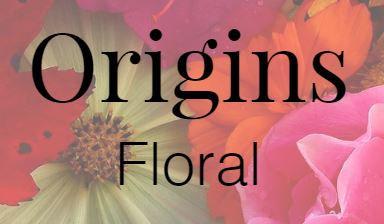 Origins Logo.JPG