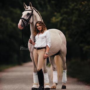 Baixanel, Lusitano stallion