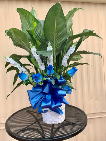Peace Lily with silk flowers 14