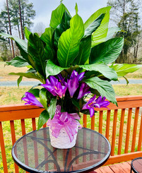 Peace Lily with silk flowers 12