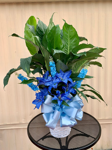 Peace Lily with silk flowers 13