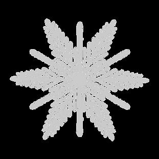 Schneeflocke_3_bearbeitet.png