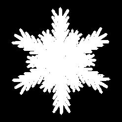 Schneeflocke_1.png