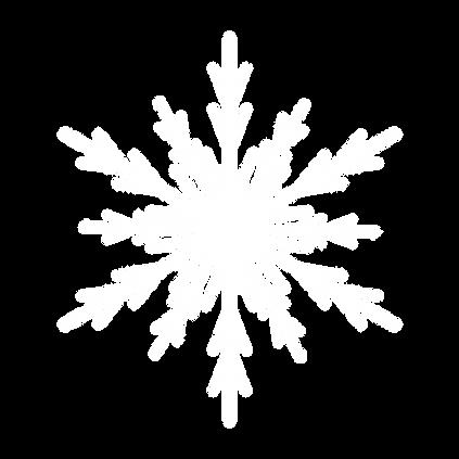 Schneeflocke_2.png