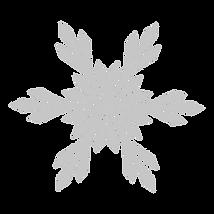 Schneeflocke_4_bearbeitet.png