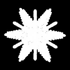 Schneeflocke_3.png