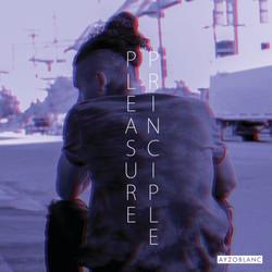 Pleasure Principle Single Cover Photo.jpg