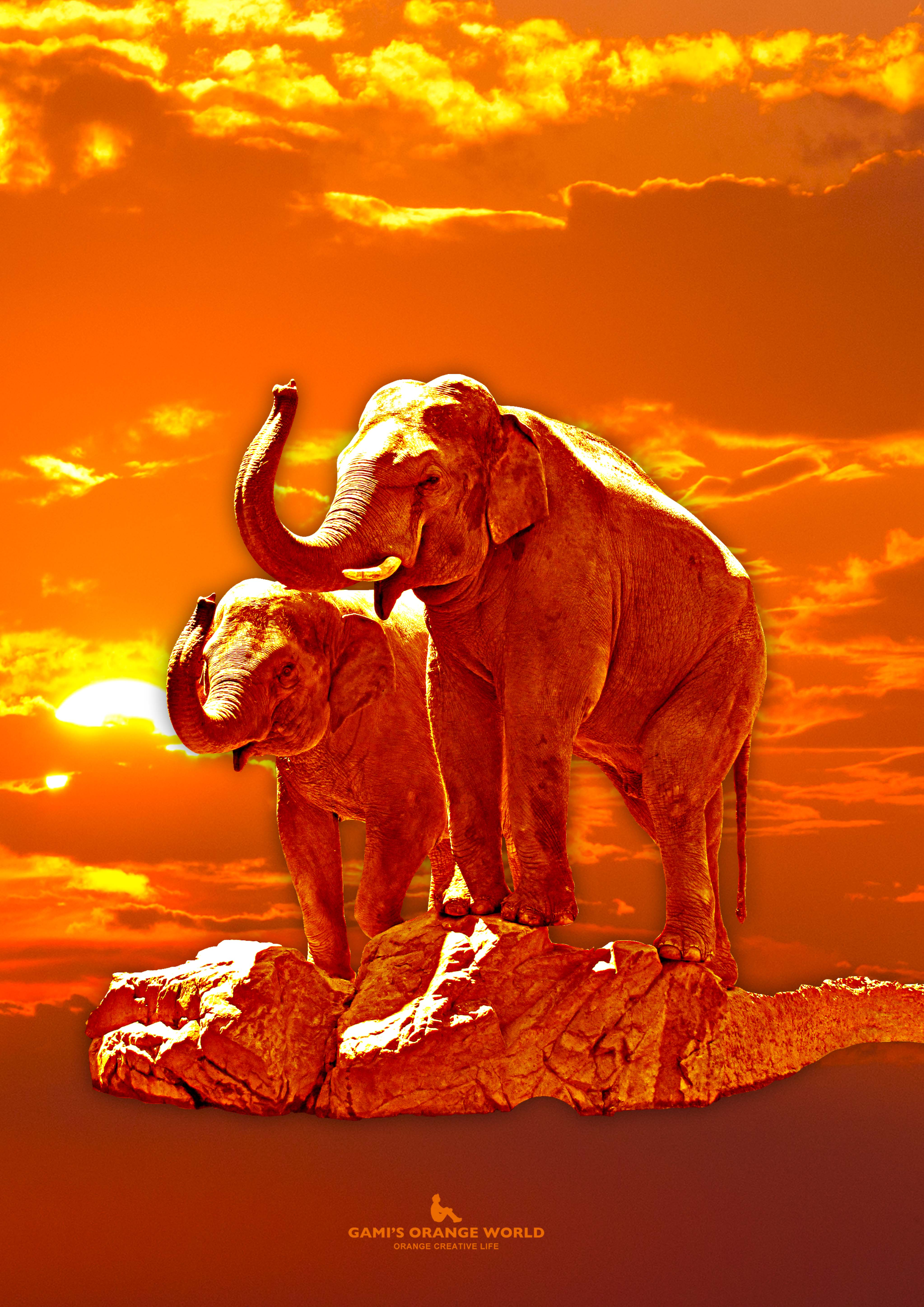 0069オレンジの象2 のコピー