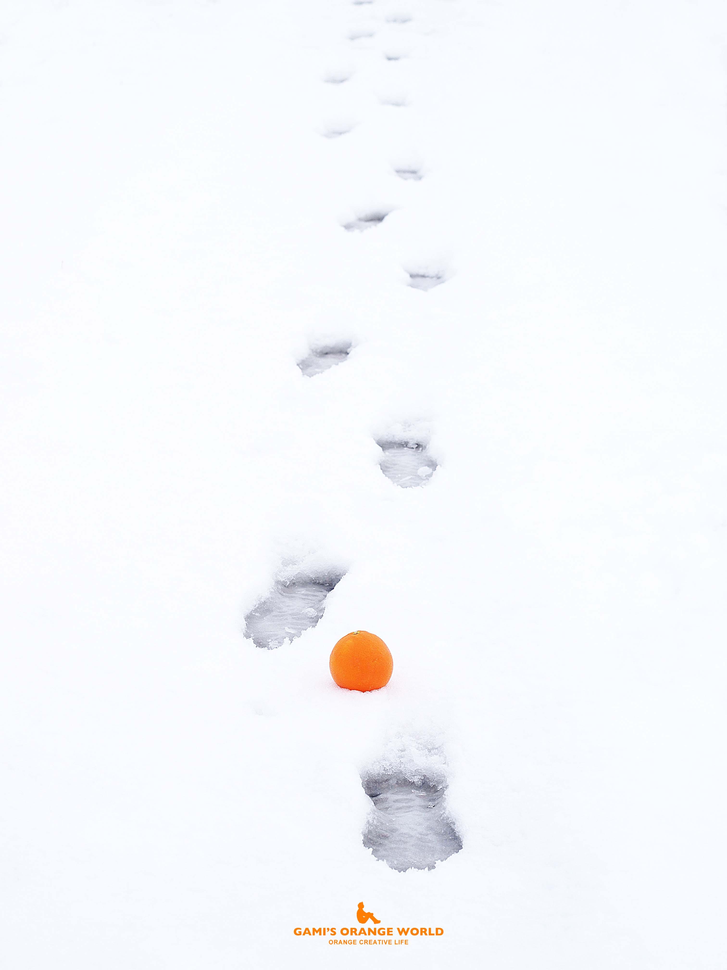 0532足跡とオレンジ7 のコピー