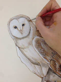 Owl Painting Wall Art