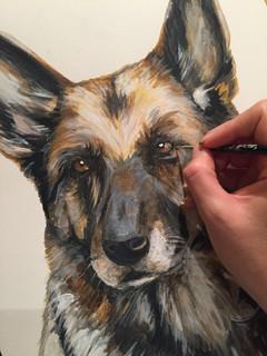 Pet Portrait Private Commission