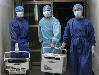 Former Medical Intern Recounts Witnessing Live Organ Harvesting by China's Military