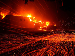 California lawmakers traveled to Hawaii with utility executives as wildfires raged