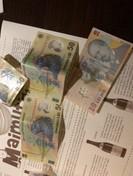 Romanian Bani Money