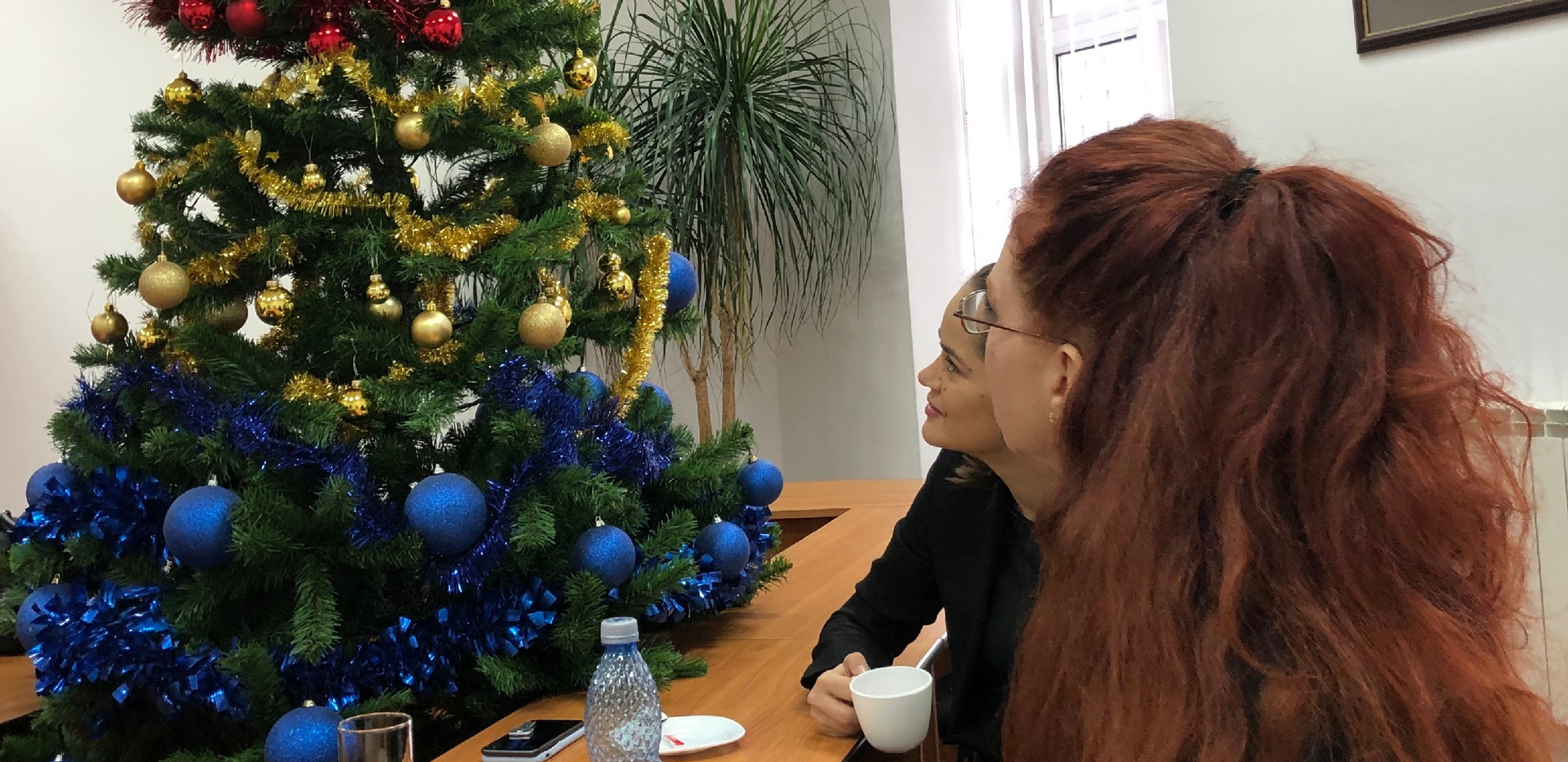 Romanian Law School Christmas Tree