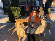 Furry benches in Bucharest