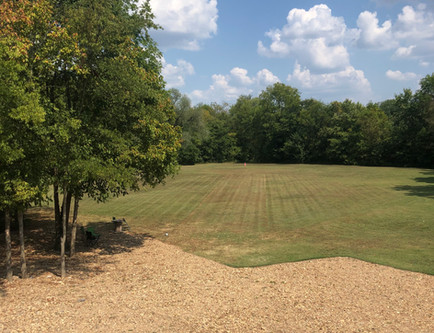 View from upstairs patio at 7695
