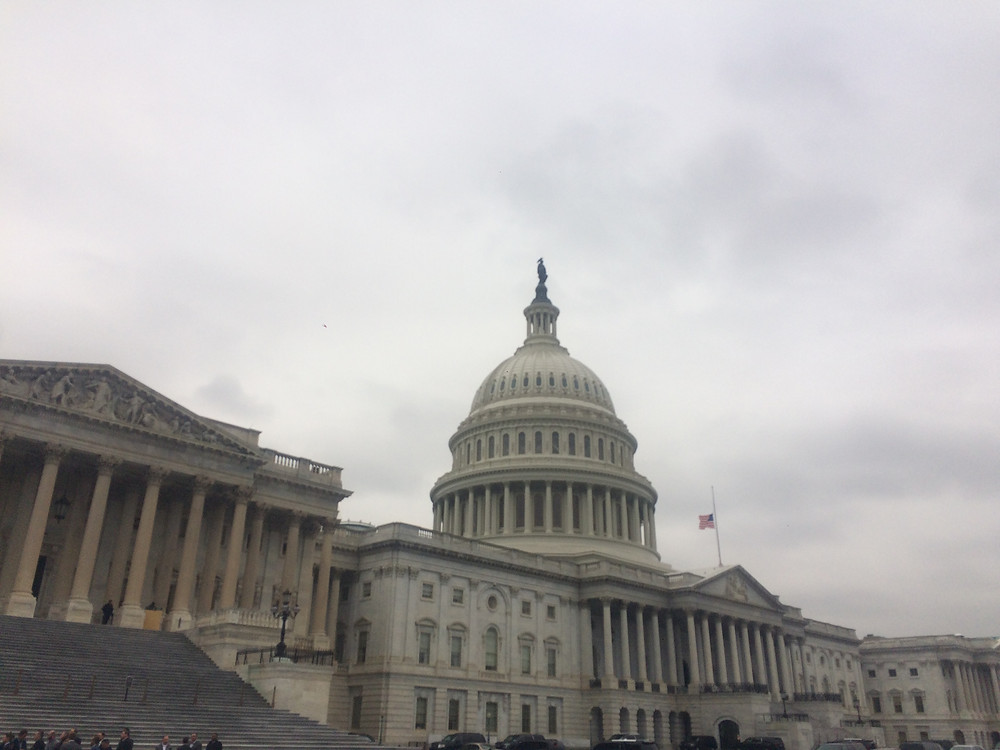 Capital Building Washington DC