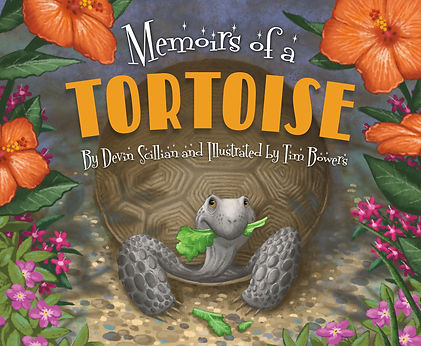 Tortoise Cover.jpg