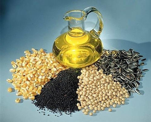 oilseed-grain-500x500.jpg