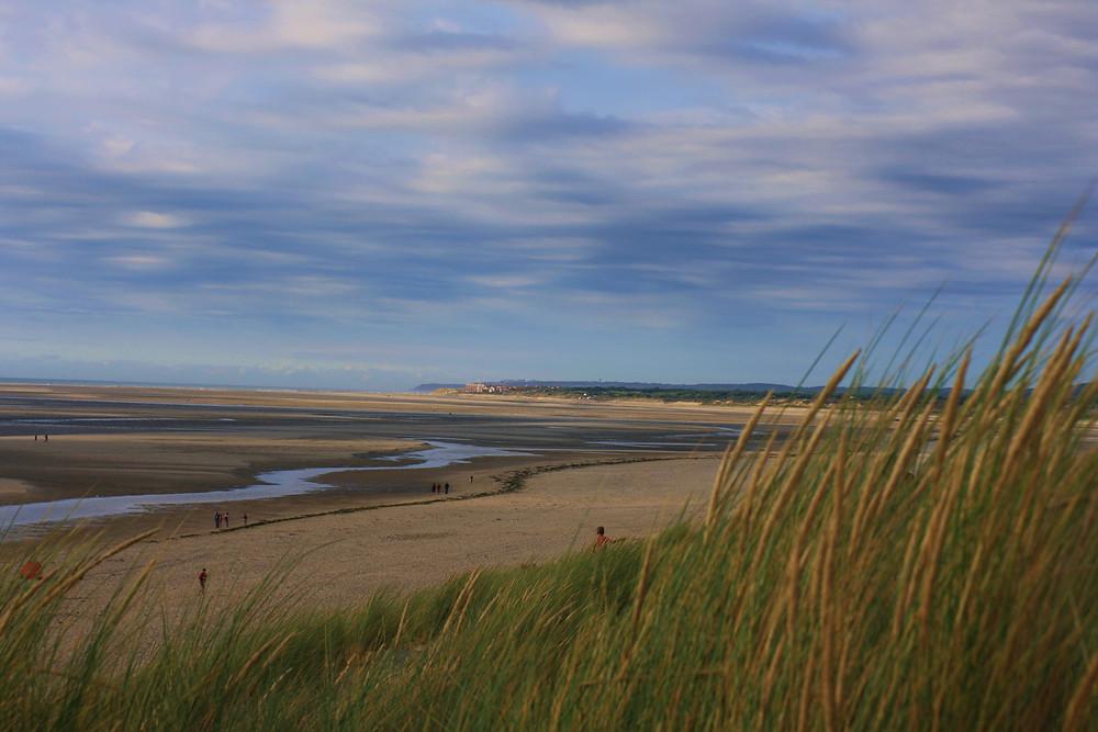 Beach & Dunes