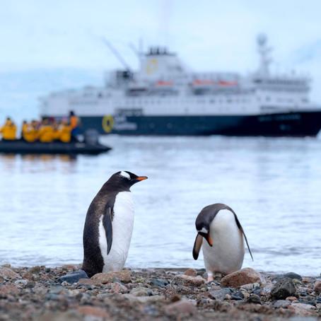 Antarctica Vacation! Why Visit?