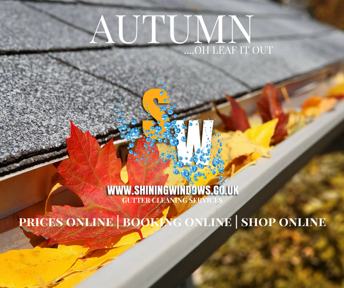 How often should Gutters be cleaned and why?