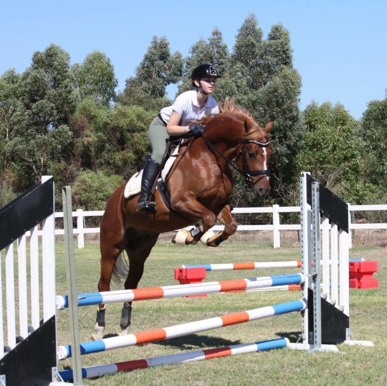 Enjoying some jumping