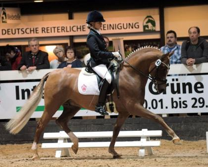 Berlin Stallion Show 2011