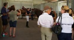 2014 od stables 2.jpg