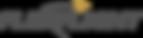 flexflight-logo-555555.png