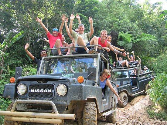 just-jungle-safari-no