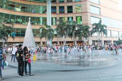 6market-mall