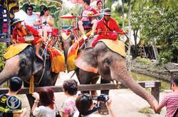 AK_ATOUR_Elephant-Village2